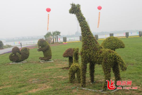 国际奇石盆景花卉根艺博览会隆重开幕