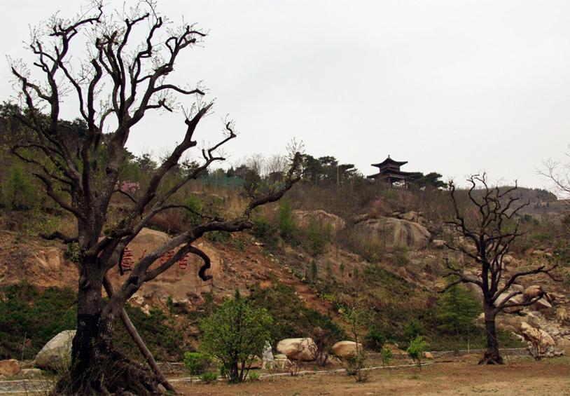 灵泉山国家森林公园旅游风景区